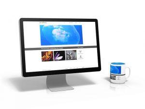 Verkkokauppa netissä